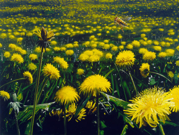 Paintings of dandelions and a bee