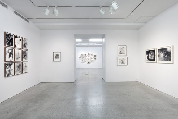 framed photographs in a gallery